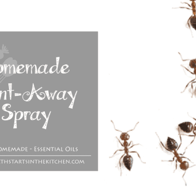 Homemade Essential Oil Ant Away Spray