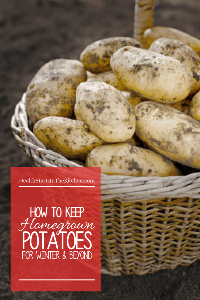 How to keep homegrown potatoes for winter and beyond - Curing, Canning Dehydrating, and Freezing