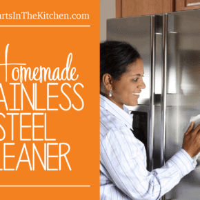 OMG this is the BEST Homemade Stainless Steel Spray Cleaner! All-Natural & smells great, too.