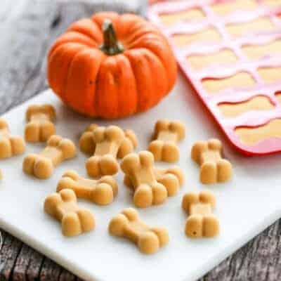 Frosty Pumpkin Dog Treats {for fall itchy skin}