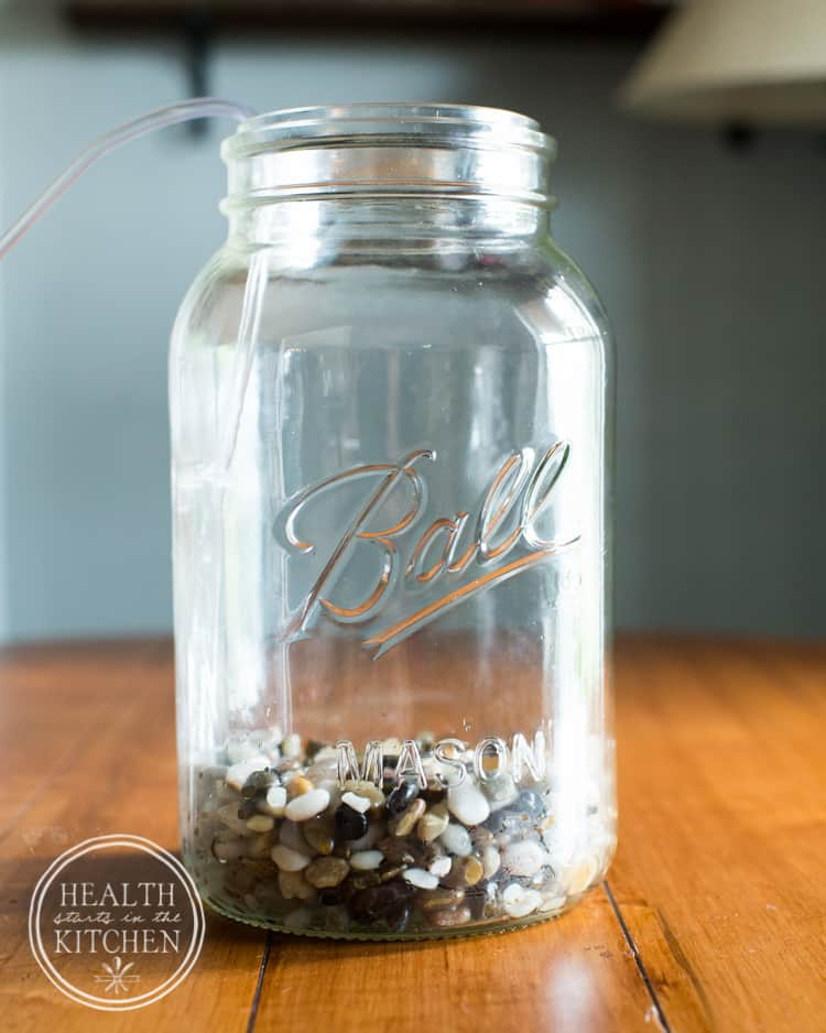 How to Make a Mason Canning Jar Aquaponics Aquarium