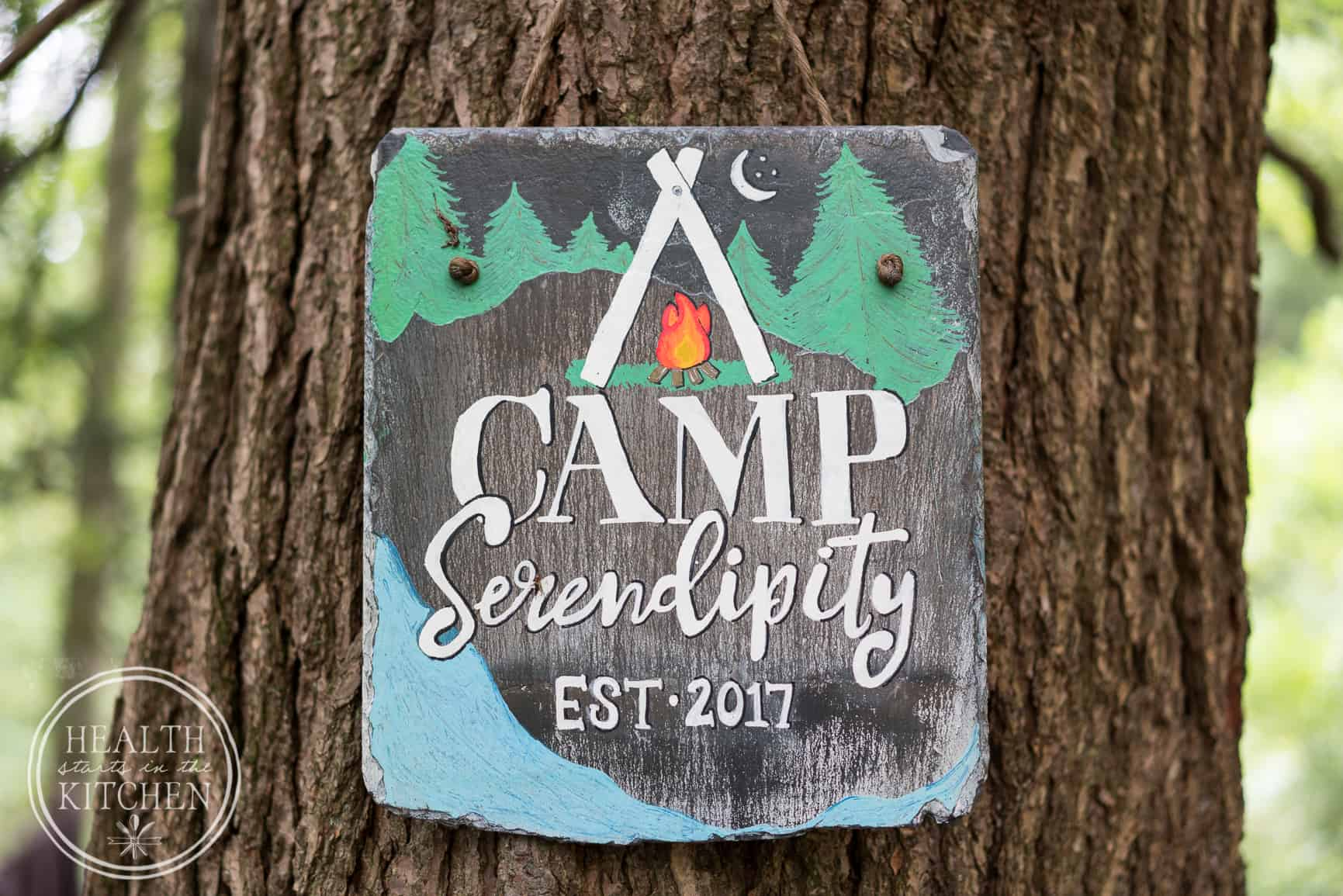 Welcome to Camp Serendipity