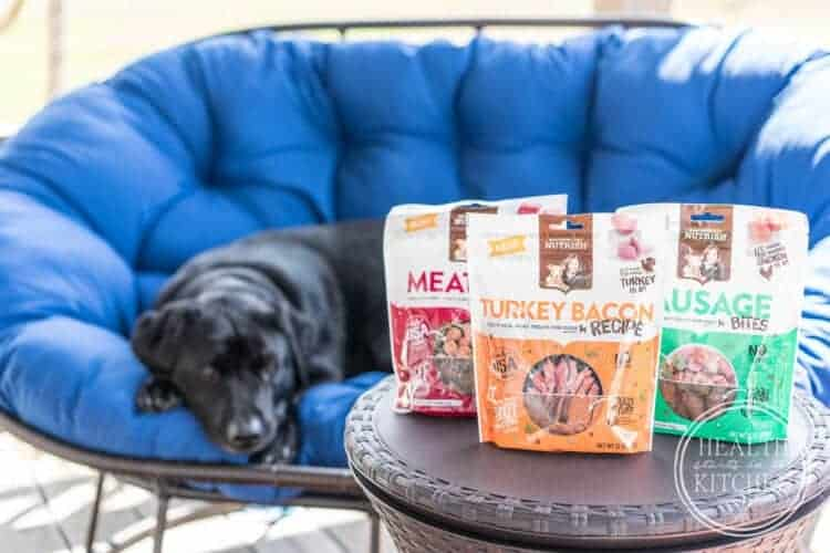 3 Healthy Ways To Spoil Your Dog