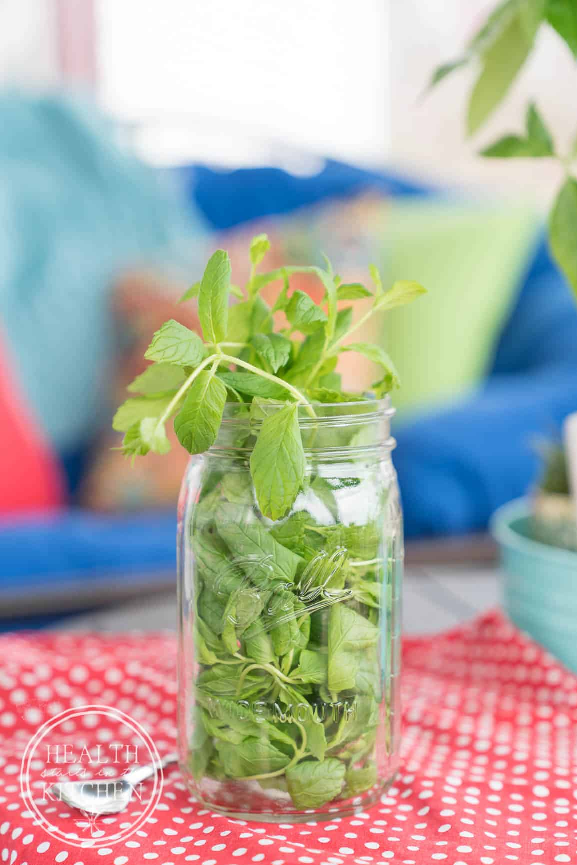 how to keep mint leaves fresh without fridge