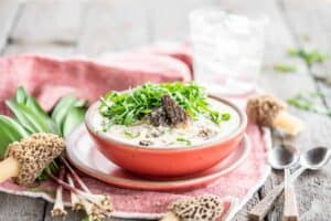 The Best Soup of Spring; Easy Morel Mushroom and Ramp Chowder