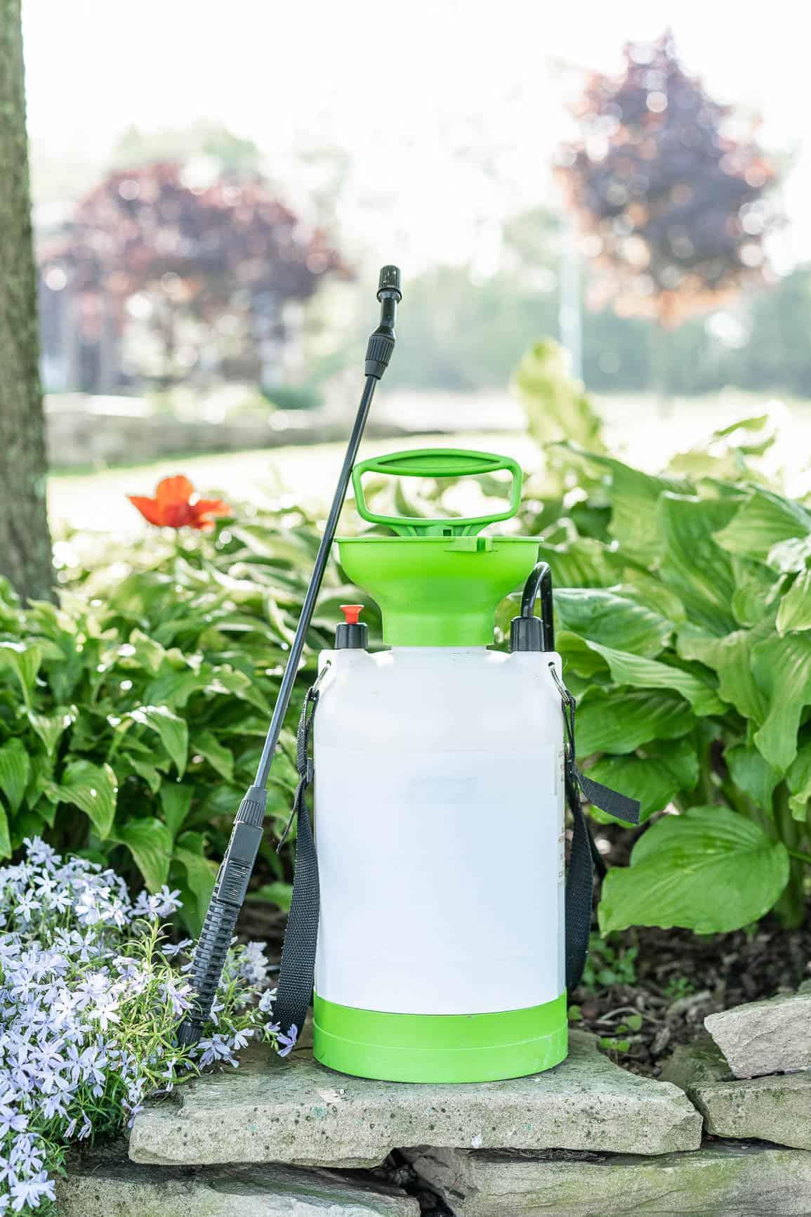 garden sprayer in front of landscaping