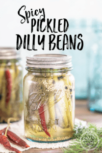 Spicy Pickled Dilly Green Beans